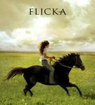Flicka - Movie Poster (xs thumbnail)