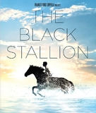 The Black Stallion - Blu-Ray cover (xs thumbnail)