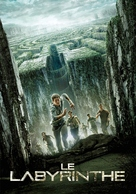 The Maze Runner - French Movie Poster (xs thumbnail)