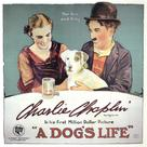 A Dog's Life - Movie Poster (xs thumbnail)