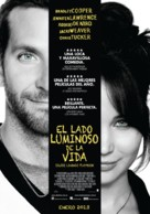 Silver Linings Playbook - Argentinian Movie Poster (xs thumbnail)