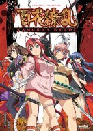 """Hyakka Ryoran: Samurai Bride"" - DVD movie cover (xs thumbnail)"