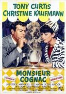 Wild and Wonderful - Italian Movie Poster (xs thumbnail)