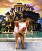 Babe: Pig in the City - Key art (xs thumbnail)