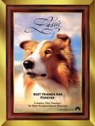 Lassie - Advance poster (xs thumbnail)