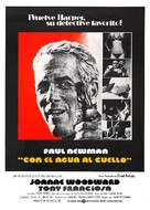 The Drowning Pool - Spanish Movie Poster (xs thumbnail)