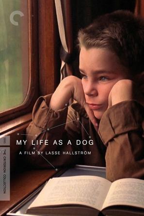 Mitt liv som hund - DVD movie cover (thumbnail)