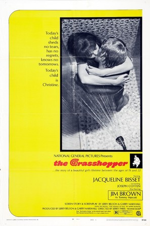 The Grasshopper - Theatrical movie poster (thumbnail)