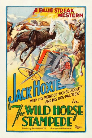 The Wild Horse Stampede
