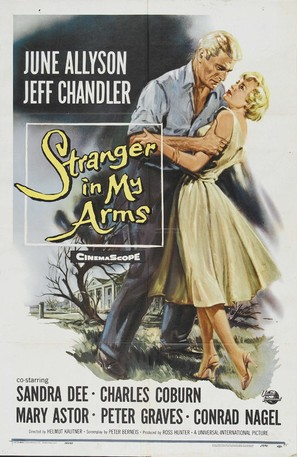 A Stranger in My Arms - Movie Poster (thumbnail)
