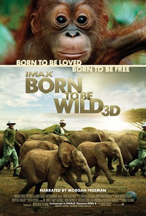 Born to Be Wild - Movie Poster (thumbnail)