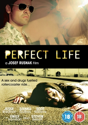 Perfect Life - British Movie Cover (thumbnail)