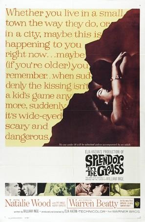 Splendor in the Grass - Movie Poster (thumbnail)