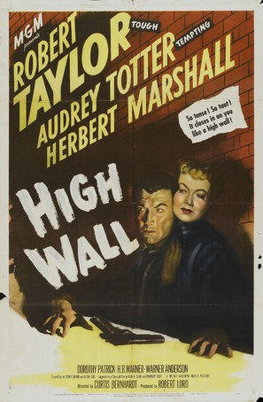 High Wall - Movie Poster (thumbnail)