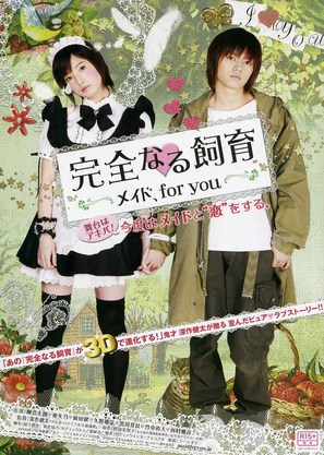 Kanzen naru shiiku: Meido, for you - Japanese Movie Poster (thumbnail)