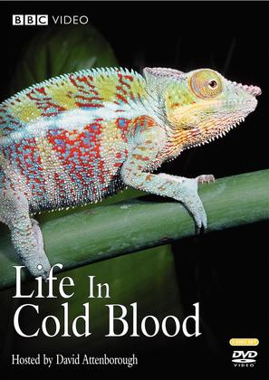 """Life in Cold Blood"" - DVD cover (thumbnail)"