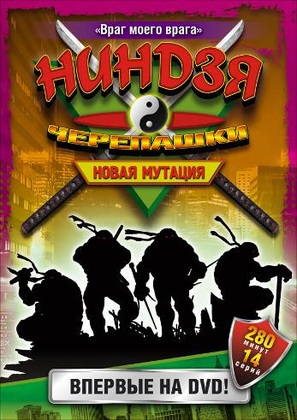 """Ninja Turtles: The Next Mutation"" - Russian DVD movie cover (thumbnail)"