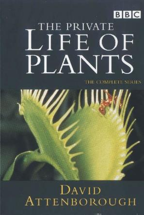 """The Private Life of Plants"" - DVD movie cover (thumbnail)"