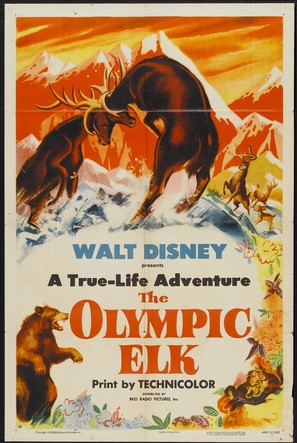 The Olympic Elk
