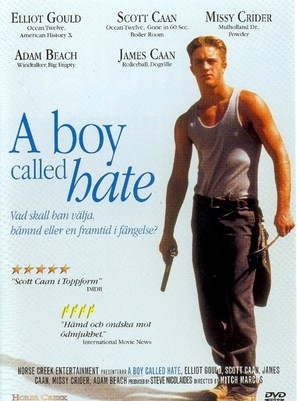 A Boy Called Hate - Swedish Movie Cover (thumbnail)