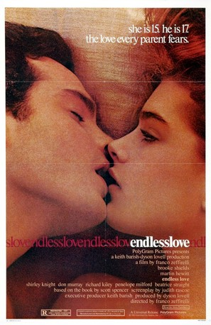 Endless Love - Movie Poster (thumbnail)