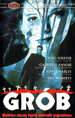The Grave - Polish Movie Cover (thumbnail)