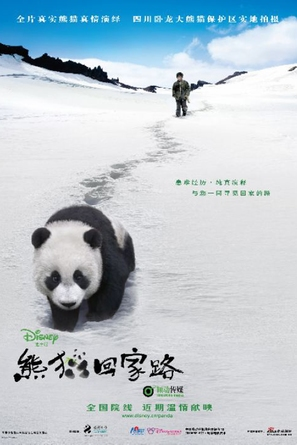 Touch of the Panda - Chinese Movie Poster (thumbnail)
