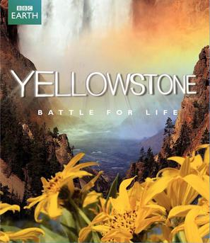 """Yellowstone"" - Blu-Ray cover (thumbnail)"