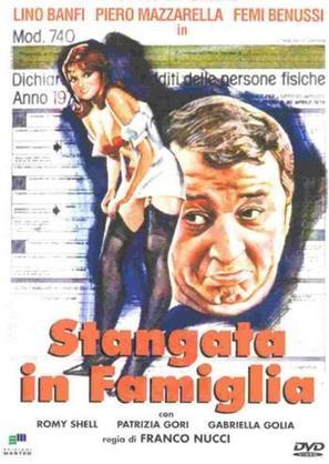 Stangata in famiglia - Italian DVD movie cover (thumbnail)