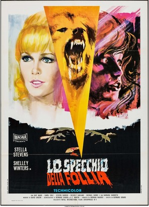The Mad Room - Italian Movie Poster (thumbnail)