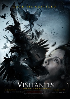 Visitantes - Mexican Movie Poster (thumbnail)