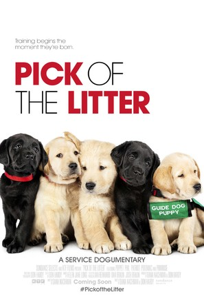 Pick of the Litter - Movie Poster (thumbnail)