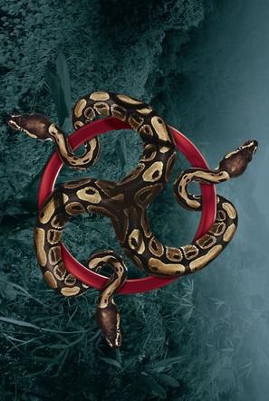 Anaconda III - Key art (thumbnail)