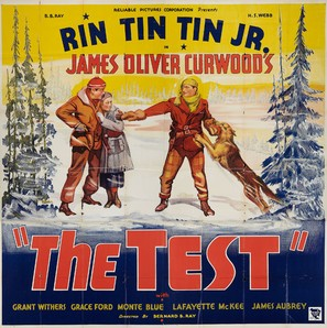 The Test - Movie Poster (thumbnail)