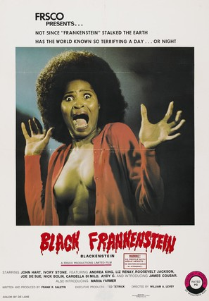 Blackenstein - Movie Poster (thumbnail)