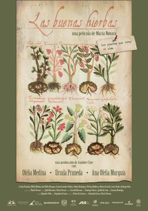 Las buenas hierbas - Mexican Movie Poster (thumbnail)