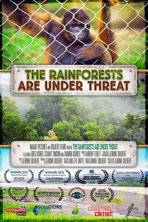 The Rainforests Are Under Threat