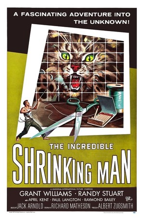 The Incredible Shrinking Man - Movie Poster (thumbnail)