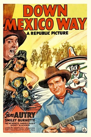 Down Mexico Way - Movie Poster (thumbnail)