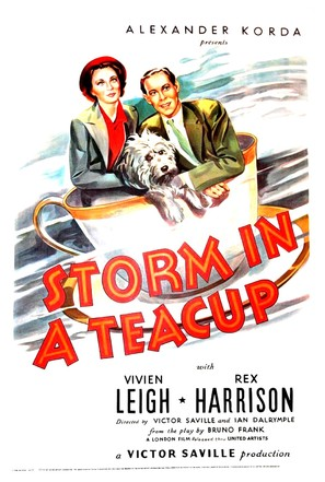 Storm in a Teacup - Movie Poster (thumbnail)