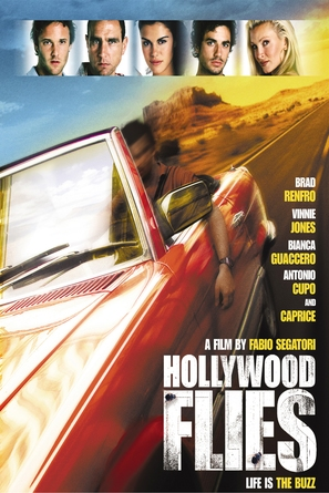 Hollywood Flies - DVD movie cover (thumbnail)