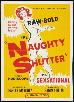 The Naughty Shutter - Movie Poster (thumbnail)