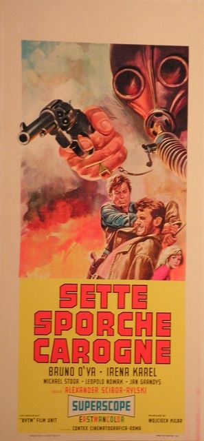 Wilcze echa - Italian Movie Poster (thumbnail)