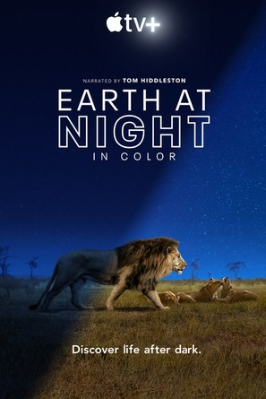 """Earth at Night in Color"""