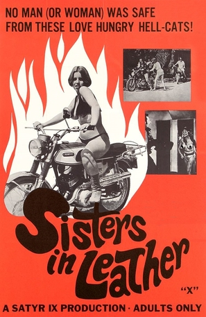 Sisters in Leather - Movie Poster (thumbnail)