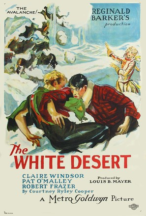 The White Desert - Movie Poster (thumbnail)