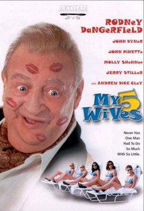 My 5 Wives - DVD movie cover (thumbnail)