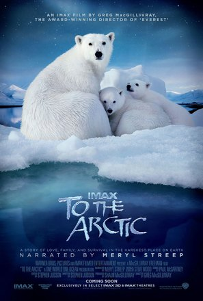To the Arctic 3D - Movie Poster (thumbnail)