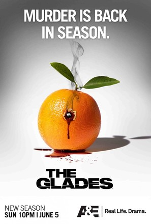 """The Glades"""