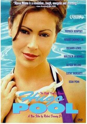 Hugo Pool - Movie Cover (thumbnail)